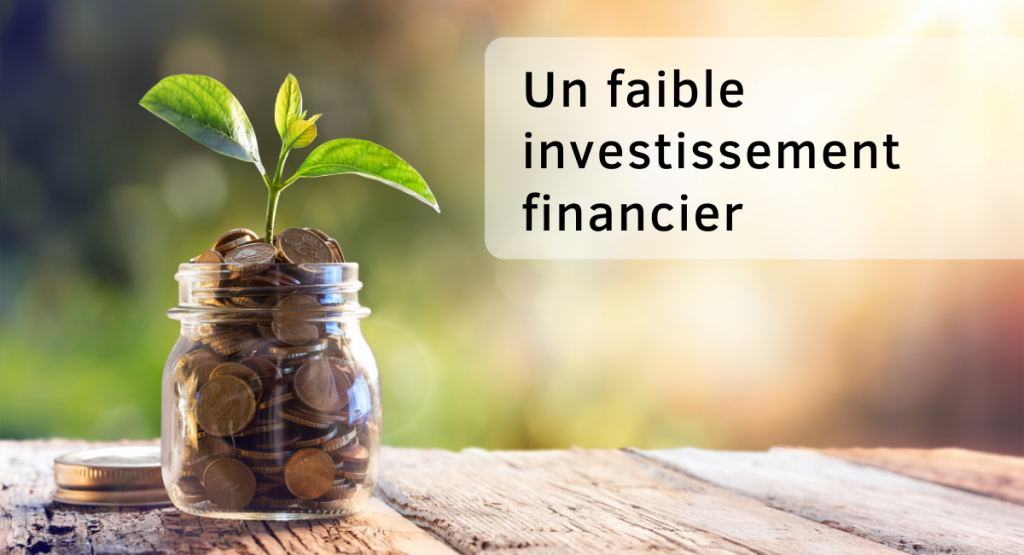 Dropshipping  - faible investissement - Ohma Digital