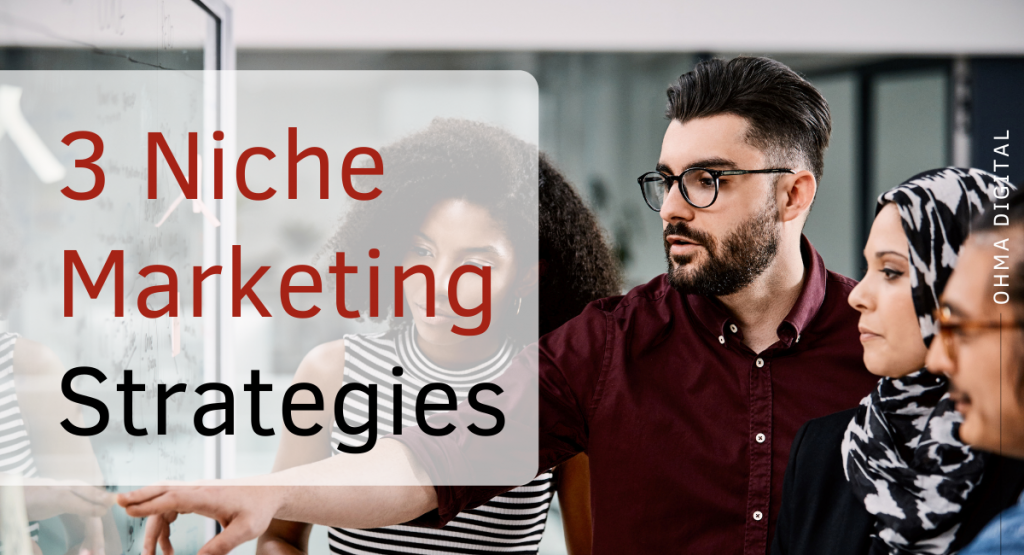 3 Niche Marketing Strategies with Examples