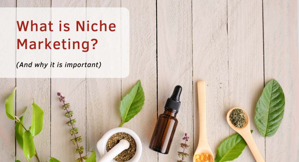 What is Niche Marketing? (And why it is important)