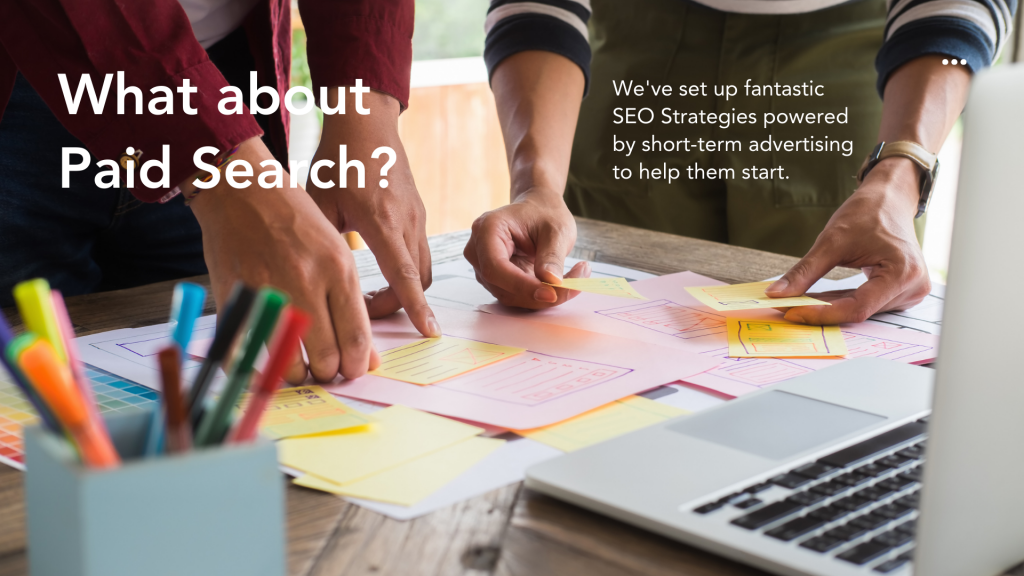 SEO Strategy: What about Paid Search?